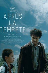 Affiche du film : Après la tempête