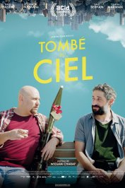 background picture for movie Tombé du ciel