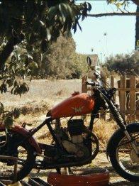 Photo dernier film Avi  Kushnir