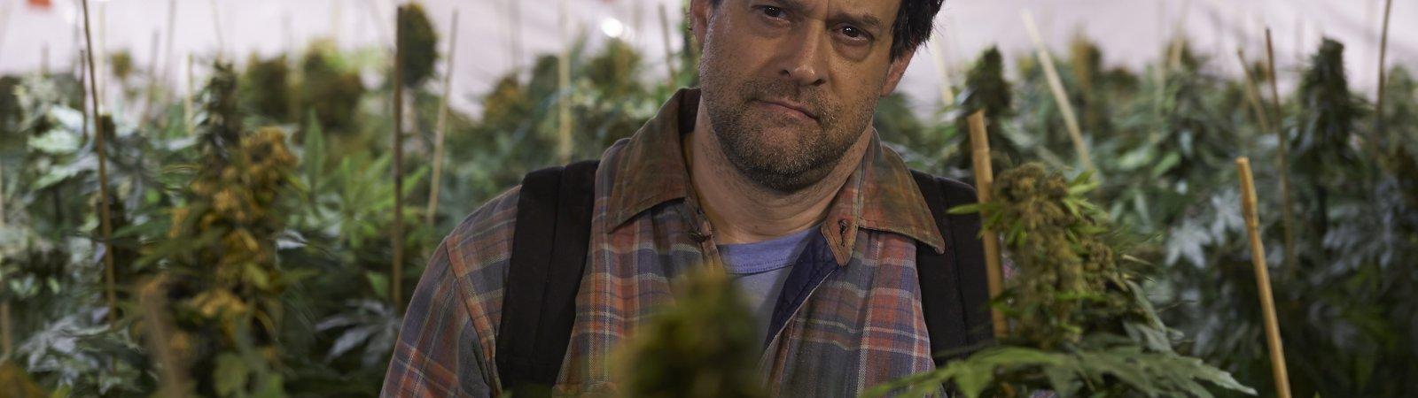 Photo du film : Les mauvaises herbes