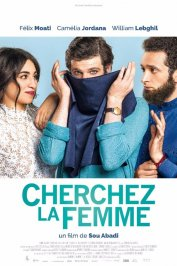 background picture for movie Cherchez la femme