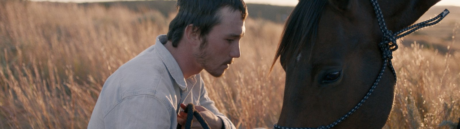 Photo du film : The Rider
