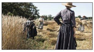 Affiche du film : Les Gardiennes