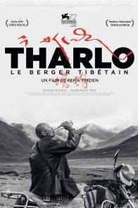 Affiche du film : Tharlo, le berger tibétain