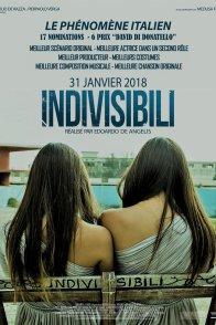 Affiche du film : Indivisibili