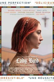 background picture for movie Lady Bird