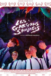 background picture for movie Les Garçons sauvages