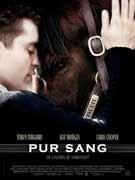 Affiche du film : Pur-Sang, la légende de Seabiscuit
