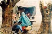 Photo dernier film Hossein Rahimi