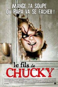 Affiche du film : Le fils de chucky