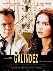 Affiche du film : Galindez