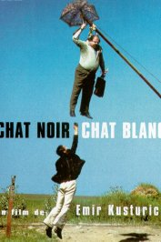 background picture for movie Chat noir, chat blanc