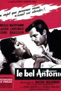 Affiche du film : Le bel antonio
