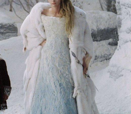 Photo du film : Le Monde de Narnia : chapitre 1 - Le lion, la sorcière blanche et l'armoire magique