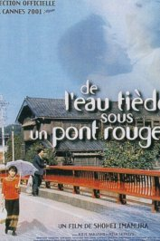 background picture for movie De l'eau tiède sous un pont rouge