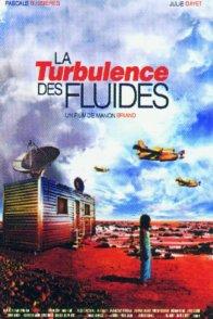 Affiche du film : La turbulence des fluides