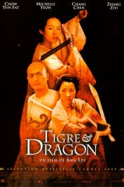 background picture for movie Tigre et dragon