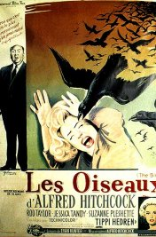 background picture for movie Les oiseaux