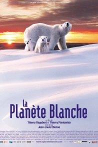 Affiche du film : La planete blanche