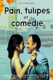background picture for movie Pain, tulipes et comédie