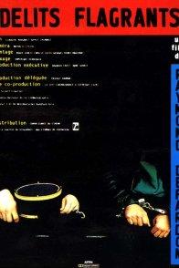 Affiche du film : Delits flagrants