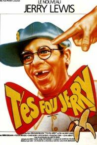 Affiche du film : T'es fou Jerry