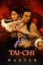 background picture for movie Taï-chi master