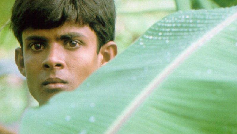 Photo du film : Hathi