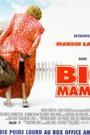 background picture for movie Big mamma