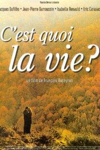 Affiche du film : C'est quoi la vie ?