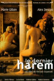 background picture for movie Le dernier harem