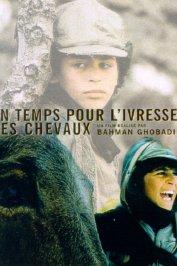 background picture for movie Un temps pour l'ivresse des chevaux