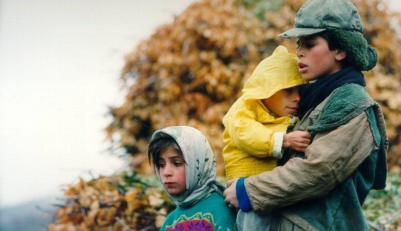 Photo du film : Un temps pour l'ivresse des chevaux