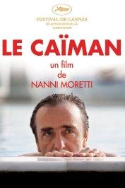 background picture for movie Le caïman