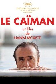 Affiche du film : Le caïman