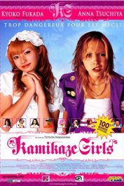 background picture for movie Kamikaze girls