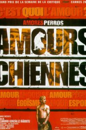 background picture for movie Amours chiennes