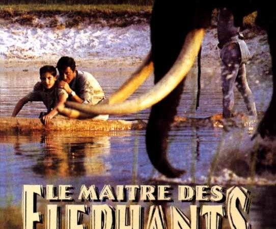 Photo du film : Le maitre des elephants
