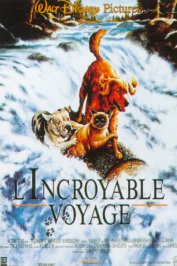 background picture for movie L'incroyable voyage
