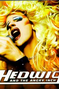 Affiche du film : Hedwig and the Angry Inch