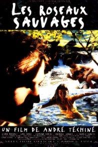 Affiche du film : Les roseaux sauvages