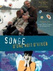 Affiche du film : Songe d'une nuit d'hiver