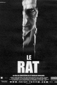 Affiche du film : Le rat