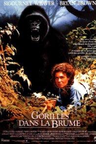 Affiche du film : Gorilles dans la brume