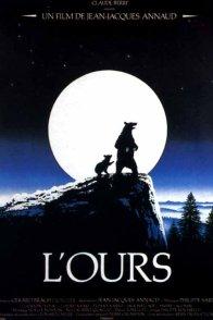 Affiche du film : L'Ours