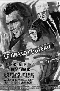 Affiche du film : Le grand couteau