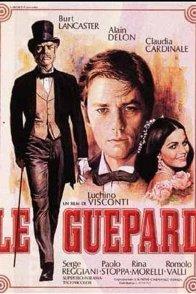 Affiche du film : Le guépard