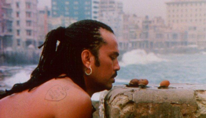 Photo du film : La vie c'est siffler