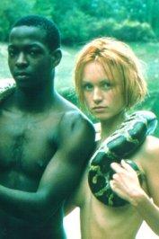 background picture for movie La fin de l'innocence sexuelle