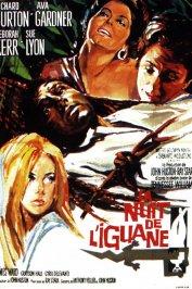 background picture for movie La Nuit de l'iguane